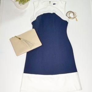 NWOT Tommy Hilfiger navy white dress